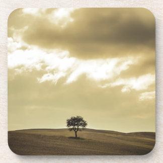 Árbol toscano posavasos