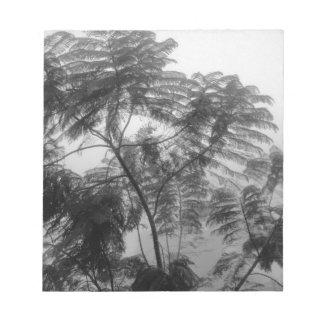 Árbol tropical blanco y negro en niebla libretas para notas