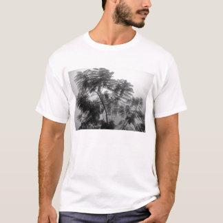 Árbol tropical blanco y negro en niebla playera