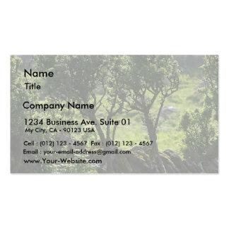 Árbol verde del seto de la montaña plantilla de tarjeta de visita