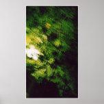 árbol verde en la noche poster