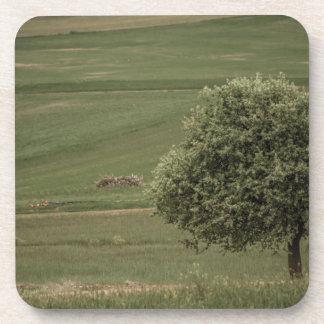 Árbol verde solamente en un campo verde posavasos