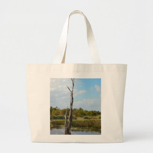 Árbol viejo cubierto en musgo bolsa