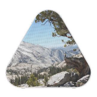 Árbol viejo en el parque nacional de Yosemite Altavoz