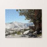 Árbol viejo en el parque nacional de Yosemite Rompecabezas Con Fotos