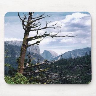 Árbol viejo en Yosemite Mousepad