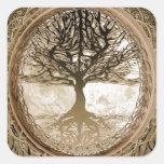 Árbol vivo pacífico calcomanias cuadradas