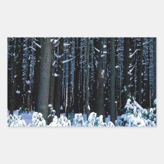 Árbol White Pine del este Pocono Rectangular Pegatina