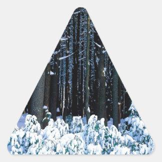 Árbol White Pine del este Pocono Calcomanía Triangulo