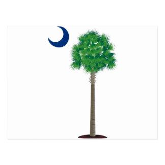 Árbol y creciente verdes del palmetto de Carolina Postal