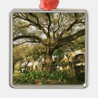 Árbol y el ajardinar en San Antonio, Tejas Adorno Navideño Cuadrado De Metal