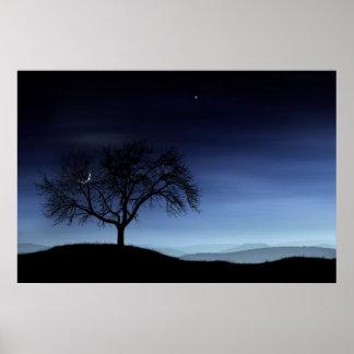 Árbol y luna póster