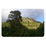 Árbol y montaña imanes flexibles