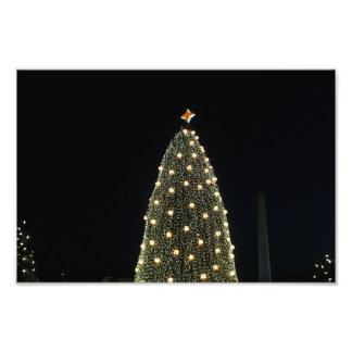 Árbol y monumento de Washington nacionales en la Fotografía