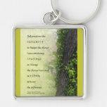 Árbol y reguera del rezo de la serenidad llaveros personalizados