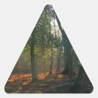 Árbol y río torcidos pegatina triangular