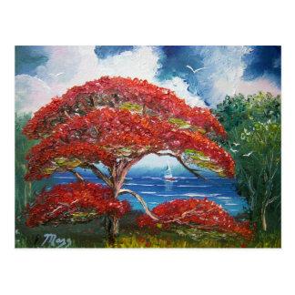 Árbol y velero reales rojos de Poinciana Tarjeta Postal