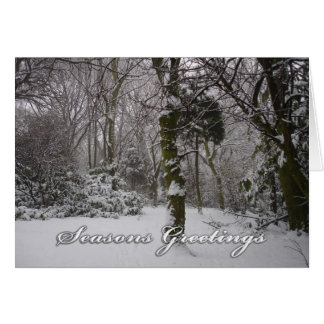 Arbolado en la nieve T - tarjeta de la nota/de fel