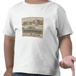 Arbolado principal del St Camiseta