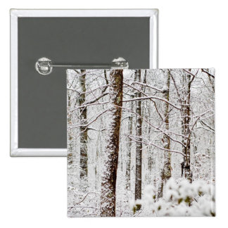 Arbolados Nevado Pocono Pin