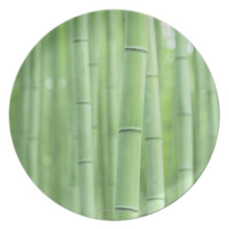 Arboleda de bambú platos