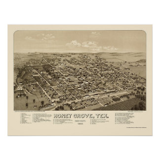 Arboleda de la miel mapa panorámico de TX - 1886 Posters