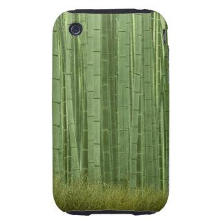 Arboleda de los árboles de bambú iPhone 3 tough cobertura