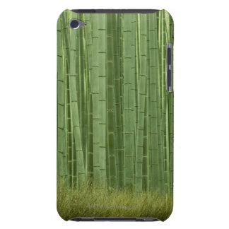 Arboleda de los árboles de bambú iPod Case-Mate coberturas