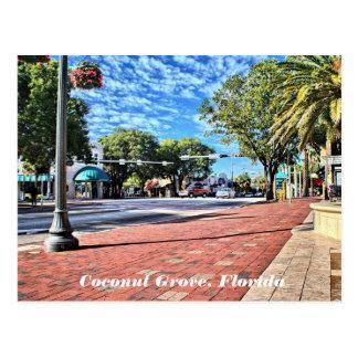 Arboleda del coco, postal de la Florida