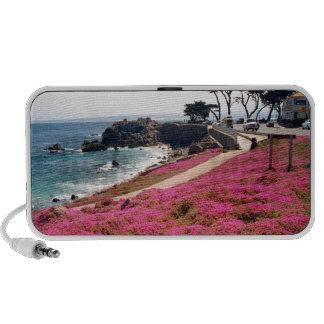 Arboleda-Monterey pacífico Calif iPod Altavoz