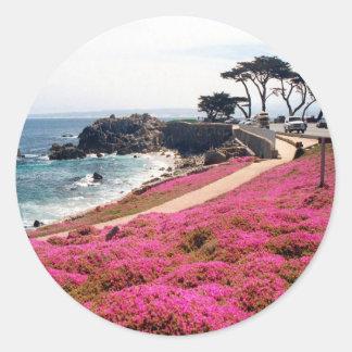 Arboleda-Monterey pacífico Calif Pegatina Redonda
