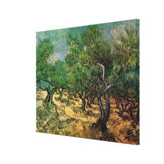 Arboleda verde oliva de Vincent van Gogh, bella Impresión En Lienzo