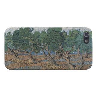 Arboleda verde oliva de Vincent van Gogh iPhone 5 Carcasas