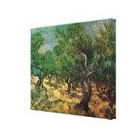 Arboleda verde oliva de Vincent van Gogh Impresión De Lienzo