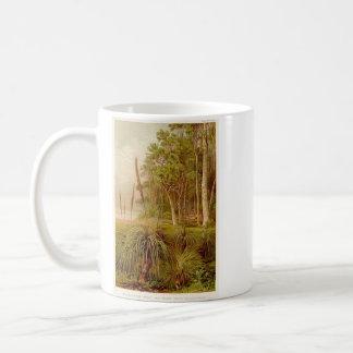 Arboleda y Hierba-Árboles del eucalipto en Taza Clásica