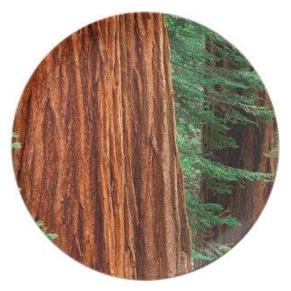 Arboleda Yosemite de Mariposa de la secoya gigante Plato Para Fiesta