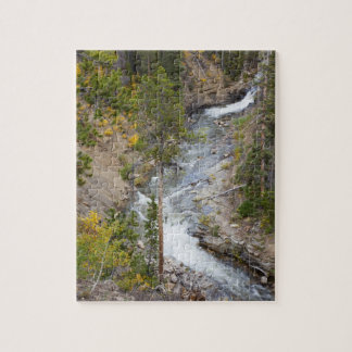 Árboles 14 del río y del álamo temblón de Provo Puzzle Con Fotos