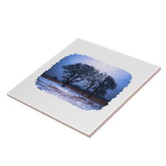 Árboles 1 del invierno tejas