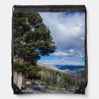 Árboles 2 del enebro y del árbol de hoja perenne mochilas