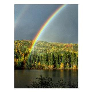 árboles afortunados del agua del cielo de la tarjetas postales