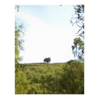 Árboles aislados en el Ridge Membrete