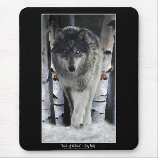 Árboles alfa del lobo gris y de abedul del inviern tapetes de ratón