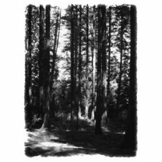 Árboles altos en blanco y negro. adorno fotoescultura