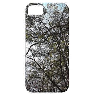 Árboles altos en la primavera, parque de Grant, Mi iPhone 5 Case-Mate Protector