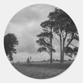 Árboles azotados por el viento pegatina redonda