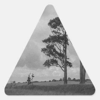 Árboles azotados por el viento pegatina triangular