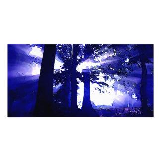 Árboles azules de la noche tarjetas con fotos personalizadas