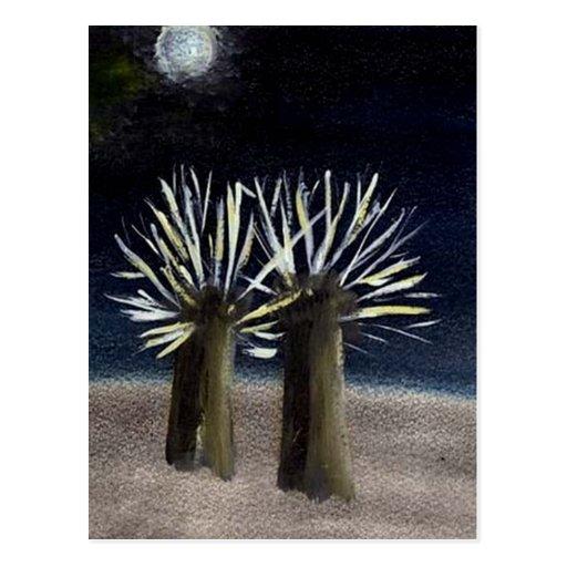 Árboles bajo la luna postales
