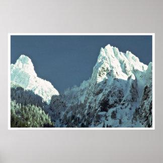 Árboles blancos como la nieve impresiones