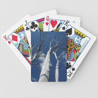 Árboles blancos contra el cielo azul baraja de cartas